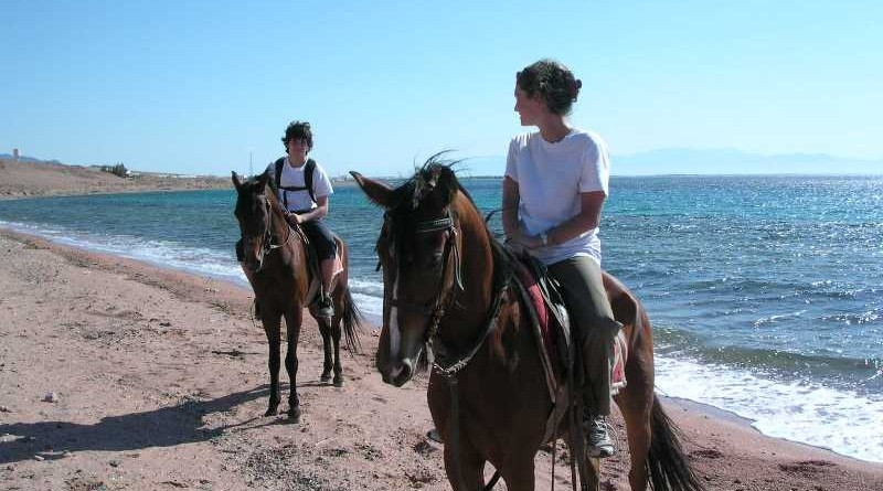 horse riding sharm-el-sheikh