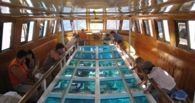glass bottom boats in sharm el sheikh